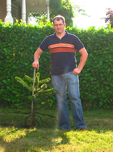 Ryan standing beside his new monkey-puzzle tree